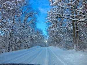 Even winter landscapes are gorgeous in my home state