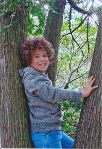 A couple years ago, in a tree at Cranbrook