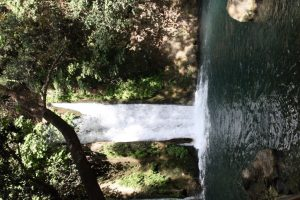 A waterfall in the Banias in Israel's north (photo by Lynne Golodner)
