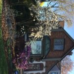 A house in my neighborhood with the beauty of spring flowers.