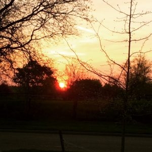 And when I finished, the red ball of sun lifting itself above the horizon.