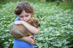 Little-girl-with-a-puppy-in-her-arms-000044618378_XXXLarge